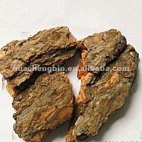 Whitening Ingredients White Willow Bark Extract 15%~98%Salicin