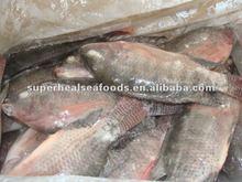 Frozen seafood Tilapia