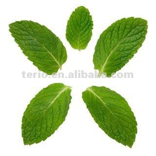 Natural Sweeter Food grade RA 95% Stevia