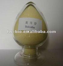 Skullcap Root Extract, Radix Scutellariae extract (70%~95% Baicalin) CAS No. 21967-41-9