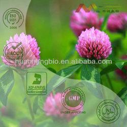 Natural Isoflavones Red Clover Extract 8%~60% Isoflavones