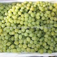 fresh green grapes Victoria