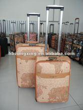 fashion luggage cases