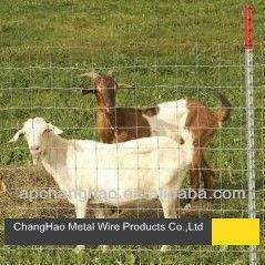 (100% direct factory) Galvanized grassland fence