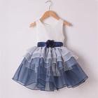 HFRFC26 kid clothes 2014 autumn cotton winter girls dress