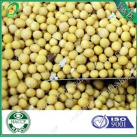 soybean for animal feed with high quality