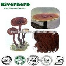 Natural Reishi Mushroom Extract 50% Polysaccharides