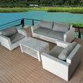 Móveis de vime jardim Sets / PE Wicker Sofa conjuntos de Outdoor