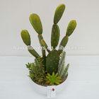 2014 Latest Green mixing artificial plants cactus plants wholesale
