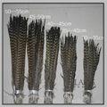descuento feilang plumas de faisán penachos de plumas para el festival