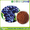 100% water soluble 95% OPC,grape seed extract powder, grape seed extract