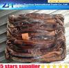 Best Price of illex argentinus !BQF Frozen Argentina Illex Squid ! frozen octopus price,frozen squid