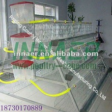 A Type or H Type High Quality Chicken Layer Cage