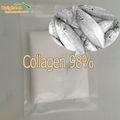 Alta qualidade vitamina C & Fish peptídeo de colágeno em pó