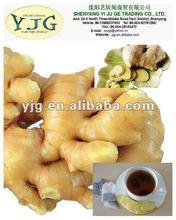 2014 NEW SEASON fresh Chinese ginger