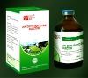 tetracycline antibiotics Oxytetracycline Injection