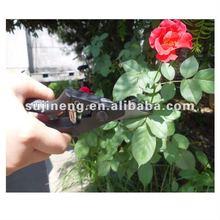2012 pruning clamp pruning tool