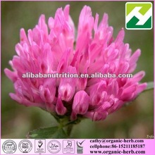 Natural Red Clover Extract (Isoflavones 2.5%-8%-40%)