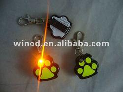 fashionable pet products led