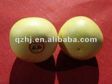 fresh honey pomelo, export all over the world