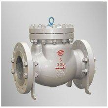 10 inch Cast Steel Bolt Bonnet Bellow Sealed Flange check valve