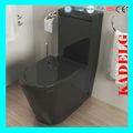 Modernes de lumière de couleur noire toilette. monobloc