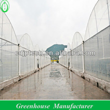 8M Span Width Agricultural Film Greenhouses