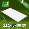 High Lumen 5 year warranty professional lighting companies