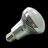 UL CUL Dimmable 6W 8W 10W 12W R63 R80 LED Bulb LED Spotlight