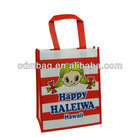 PP promotional laminated non-woven bag reusable shopping bag at low price