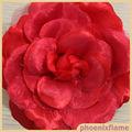 coloridas flores artificiales