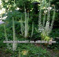 High Quality Black Cohosh Triterpene glycosides