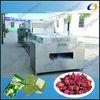 hot sales belt drying machine microwave tunnel flower dehydrator