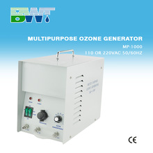 1000 mg/h water ozone generator for SPA and Hot Tub