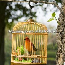 plastic weird bird for fun