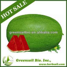 High Disease Resitant Watermelon Seeds For Growing