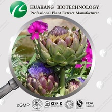 100% Natural Cynarin Artichoke Extract