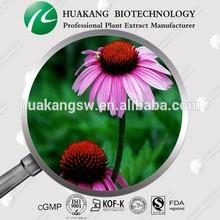 100% Natural Echinacea Purpurea Extract