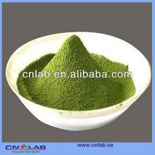UHT Steam Treated Chlorella Extract
