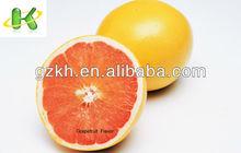 Grapefruit Flavor for energy drinks