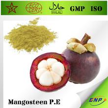 GMP&Kosher BNP Supply Top Quality 100% Natural Mangosteen Extract Mangosteen Juice Powder Alpha-Mangostin Polyphenols