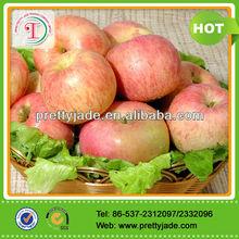 2014 Chinese Fresh Organic Fuji Apple