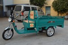 Electric cargo tricycle for adult