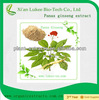 Ginseng extract/korean red ginseng extract gold/panax ginseng berry extract