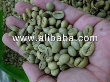 Java Robusta Green Coffee Beans Grade AP1