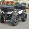 CF 500CC ATV/QUAD/MOTO FRONT/REAR TAIL STORAGE CARGO LUGGAGE BOX