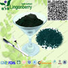 Food Grade Chlorella/ Spirulina powder