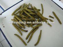 canned cut green bean