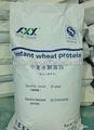 protéines de blé hydrolysées