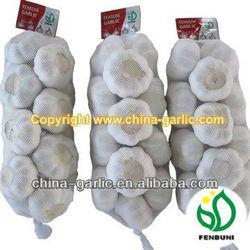 Chinese Fresh Garlic White For Sale 5.0CM 10KG Carton/Mesh Bag